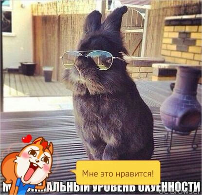 Фото мужчины Вадим, Ухта, Россия, 45