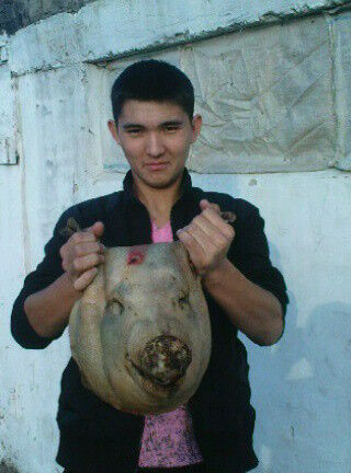 Фото мужчины Erlan, Нукус, Узбекистан, 28