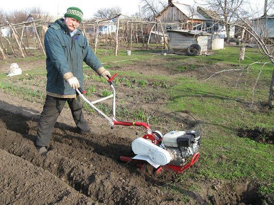 Фото мужчины борис, Краснодар, Россия, 61