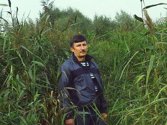 Фото мужчины алексей, Челябинск, Россия, 59